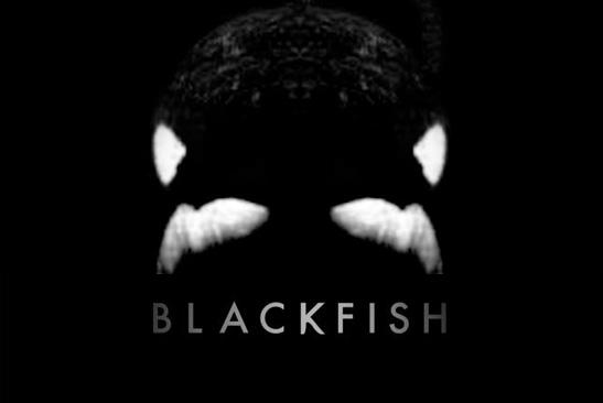 n_blackfish